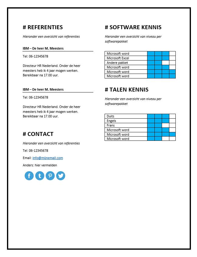 cv voorbeeld talen PREMIUM CV Voorbeeld microsoft word
